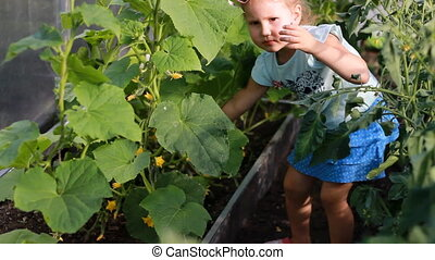 Child girl in a greenhouse with cucumbers and tomatoes