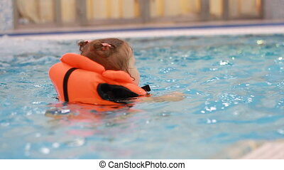 Child girl in the pool in a life jacket learns to swim....