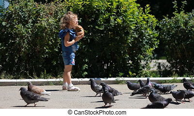 Child girl is feeding birds of pigeons in the park