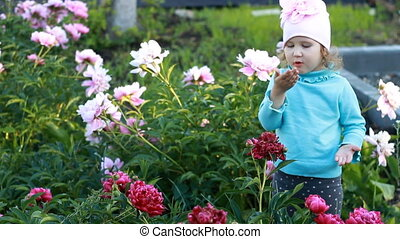 Child girl sends kisses in the garden with peonies. The...