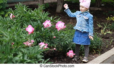 Child girl sniffs the aroma of peony flowers.