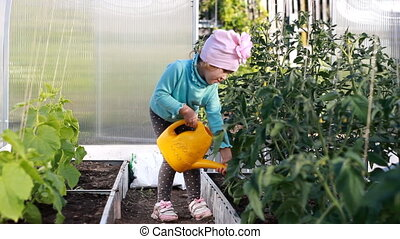 Child girl water the plants in the greenhouse with water...