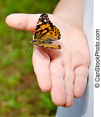 Child holding butterfly - Spring concept with close up of...