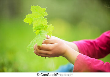 Child holding little green plant in hands