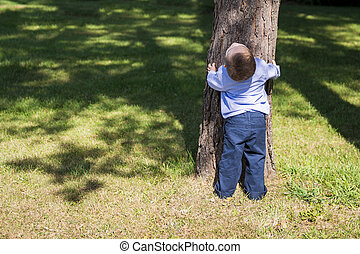 Child Hugging Tree in Park - Little boy hugging tree in...