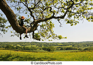 Child in a tree enjoying the view - Child in a tree in the...
