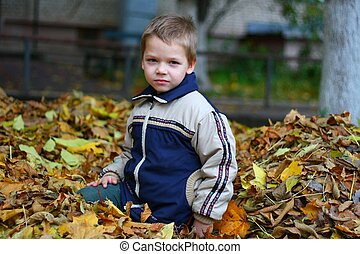 Child in autumn leaves
