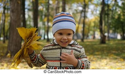 Child in autumn Park having fun playing with leaves, Walks...