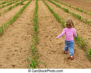 Child in garden - Little girl walking through a vegetable...