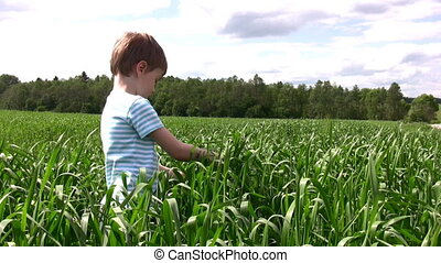 child in grass field