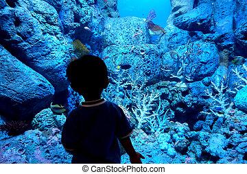 Child in sea aquarium