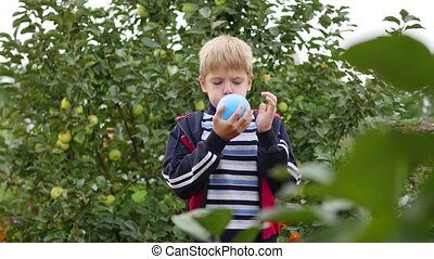 child in the garden inflate a blue balloon