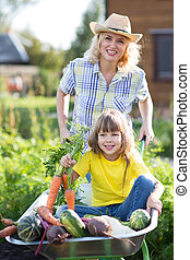 Child in the garden wheelbarrow with fresh vegetables outdoor. Mother is carrying her daughter in cart.