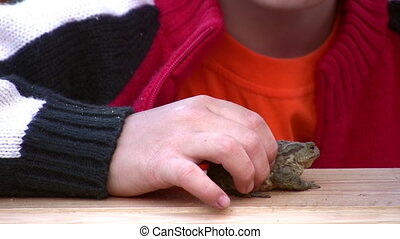 child kiss frog