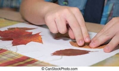 Child making herbarium from leaves. Close-up - Unknown...