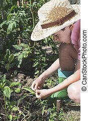 Child planting plans in a garden