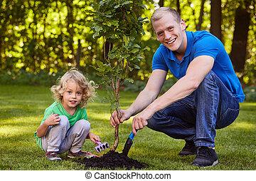 Child planting tree seedling