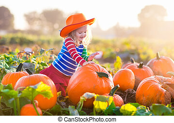 Child playing on pumpkin patch - Little girl picking ...