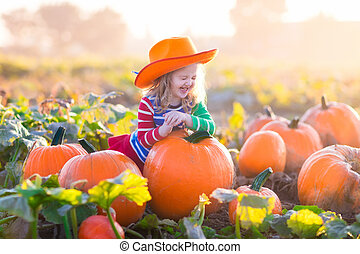 Child playing on pumpkin patch - Little girl picking...