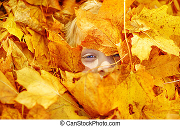 Child portrait in autumn leaves. Maple leaves cover face
