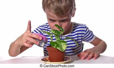 child pour plant