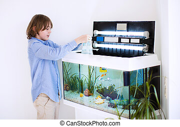Child putting new fish in an aquarium - Little happy boy...