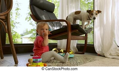 Child sitting near chair with dog at home