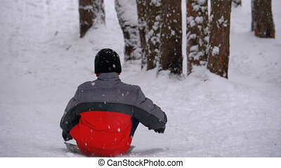 Child Sledding Down a Snowy Hill in Pine Forest. Slow Motion