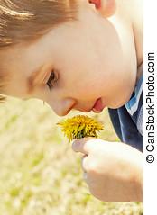Child smelling dandelion flower