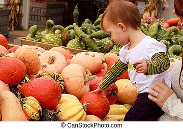 Child Touch Pumpkin