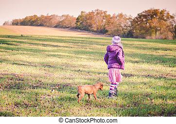 child training dog wide field