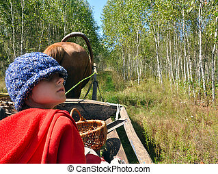 child travelling in a horse-cart