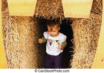 Child Walking Hay