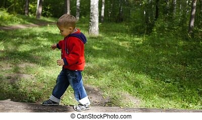 child walking in autumn Park. The boy goes on a fallen tree