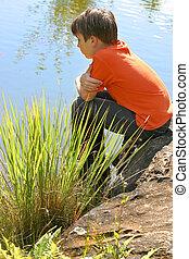 Child watching fish