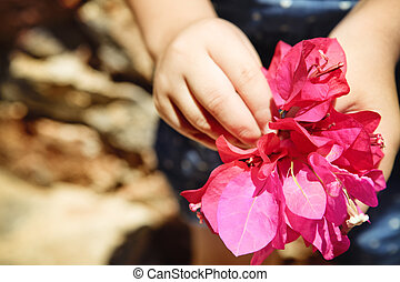 Child with bunch of bougainvillea