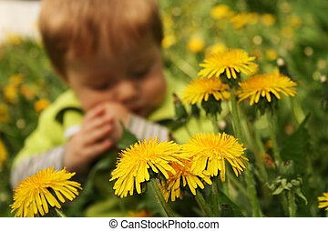 Child with the dandelion