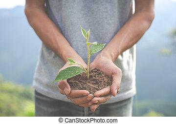 children., 環境, 概念, 庭, 保存