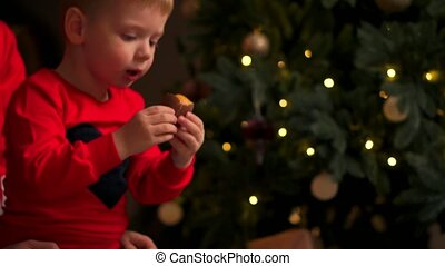Children at Christmas tree eat cookies on Xmas eve. Family...