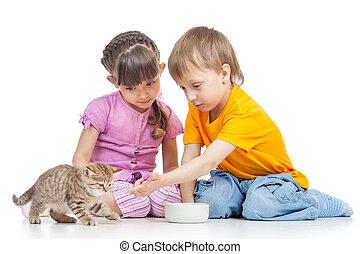 children boy and girl feeding cat kitten