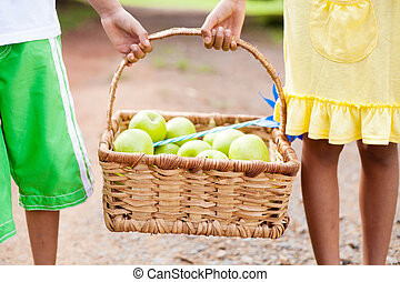 children carrying a basket of apple outdoors