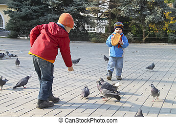 Children fed the pigeons in autumn city park
