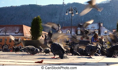 children feeding pigeons on a main square of romanian town...