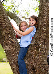 children girls playing climbing to a tree park