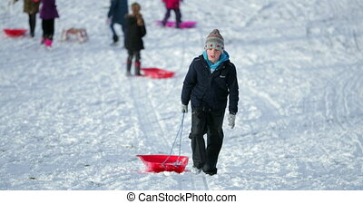 Children Going Sledding in the Park - Little boy and his...