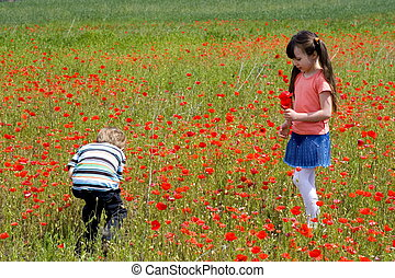 children in a meadow