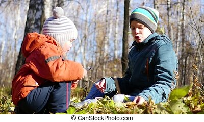 Children in autumn Park having fun playing with the leaves, walks in the fresh air. Autumn landscape. A beautiful scenic place