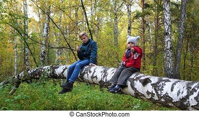 Children in the autumn Park walk in the fresh air. Two children sitting on a fallen tree. A beautiful scenic place