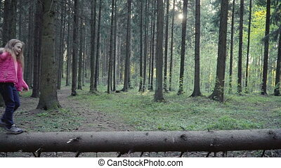 Children is walking on the log in the forest - Little girl...