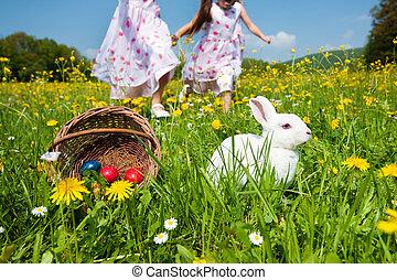 Children on Easter egg hunt with bunny
